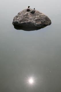 Img_02481