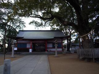 ooyosami1_7