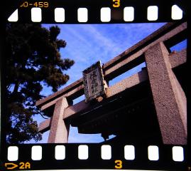 sumiyoshi_taisha1