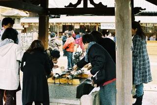 yakuyoke1_1